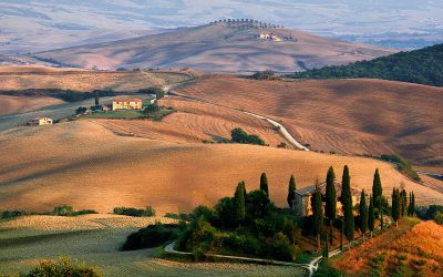 Toscana Dinner Event | October 20th | By reservation only
